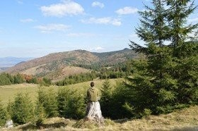 Mindfulness & Stress reduction